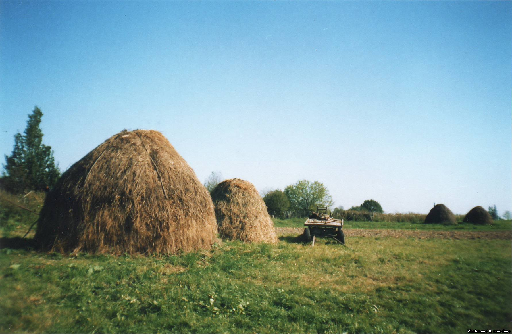 фото природа деревня